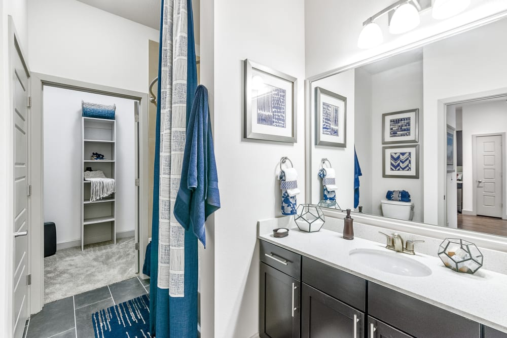 Walk-in Closet | Axis 3700 Apartments Plano, TX
