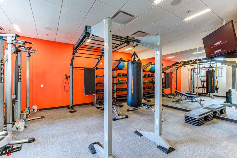 Weights area at Main Street Apartments in Rockville, Maryland