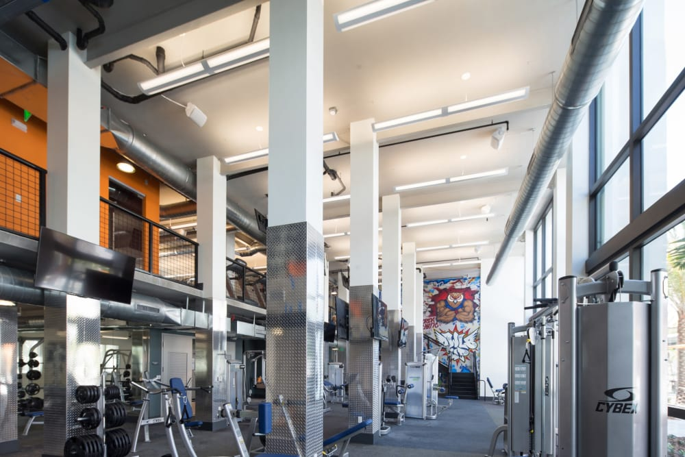Massive fitness center for students to workout in at University Park in Boca Raton, Florida