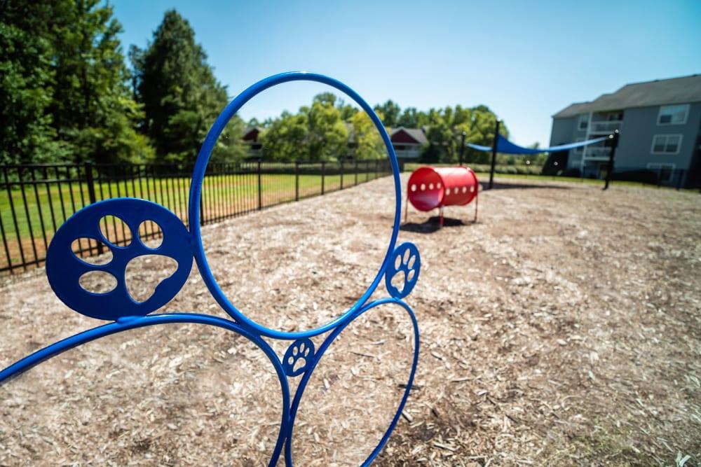 An onsite bark park at 200 Braehill in Winston-Salem, North Carolina