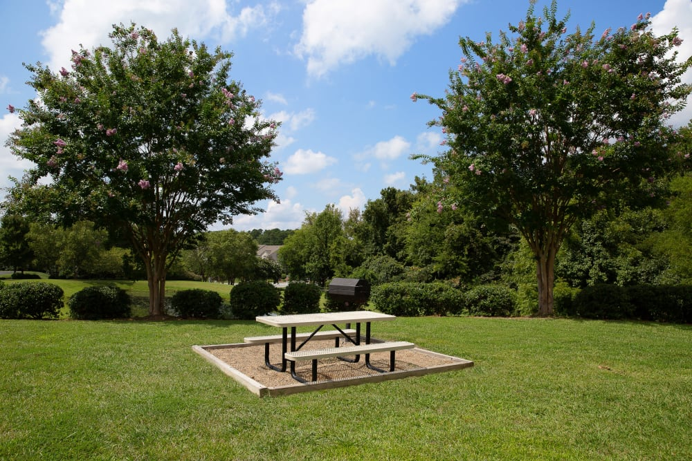 A large grass field with picnic tables at 7029 West in Greensboro, North Carolina