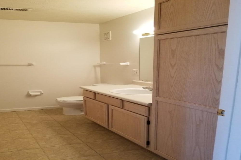 Bathroom at Lake Pointe Apartment Homes in Portage, Indiana