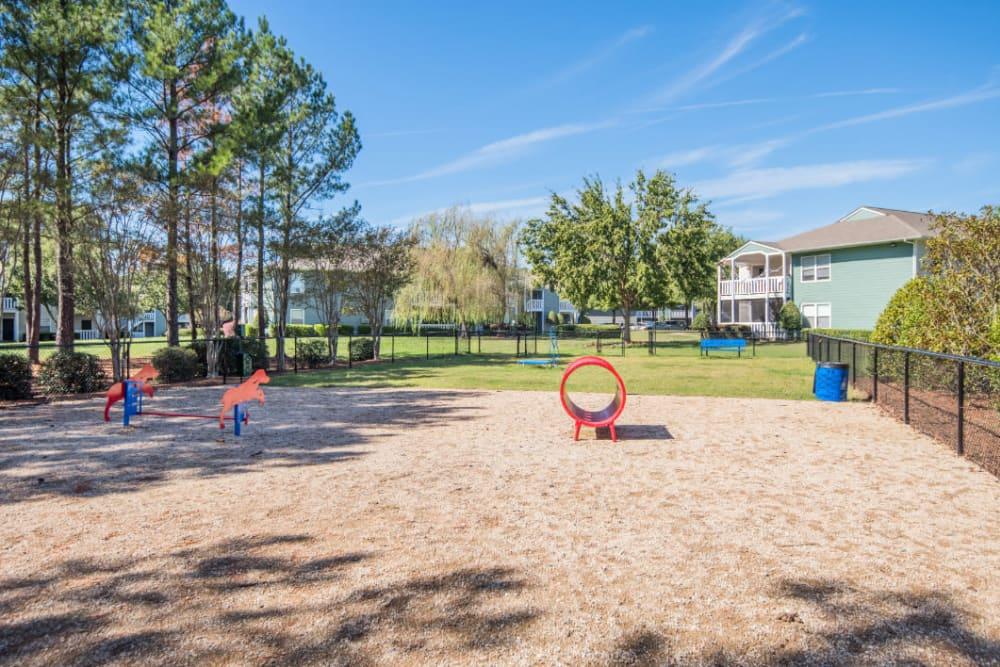 A large bark park at The Harlowe in Charlotte, North Carolina