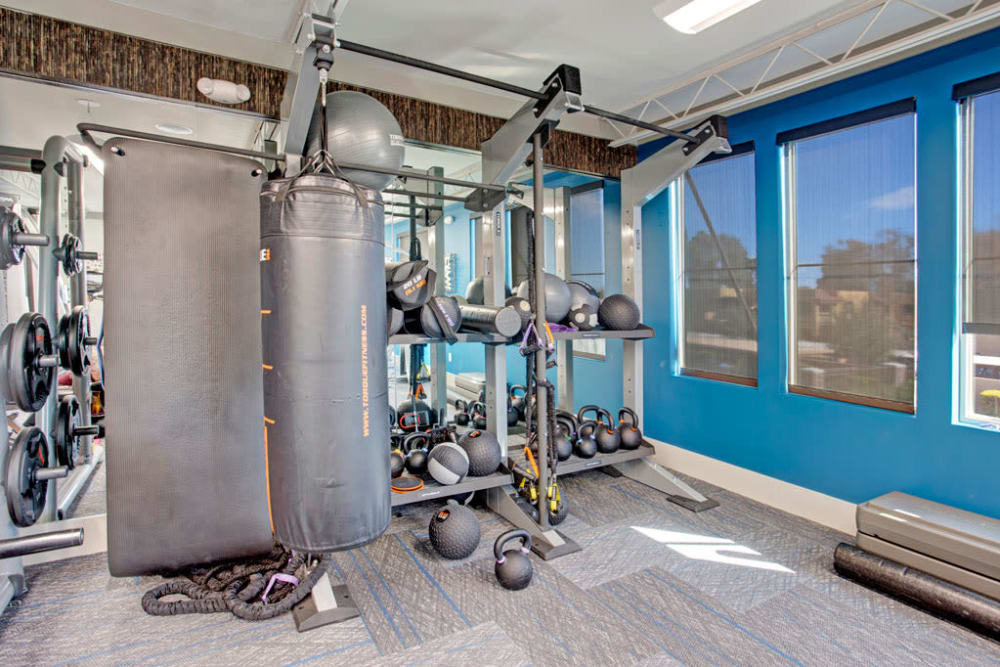 Gym at Luxe Scottsdale Apartments in Scottsdale, Arizona