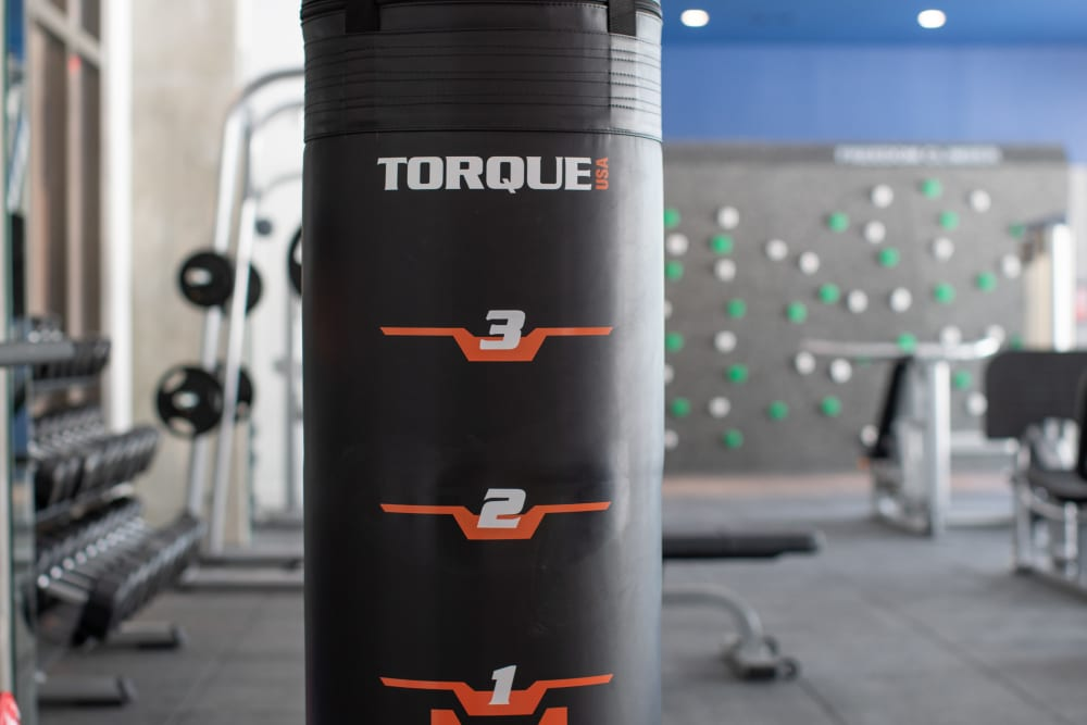 Our Apartments in San Antonio, Texas offer a Gym w/ a Punching Bag