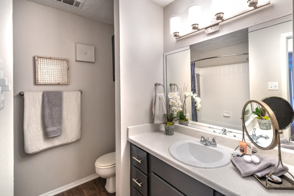 Clean bathroom at Lane at Towne Crossing in Mesquite, Texas