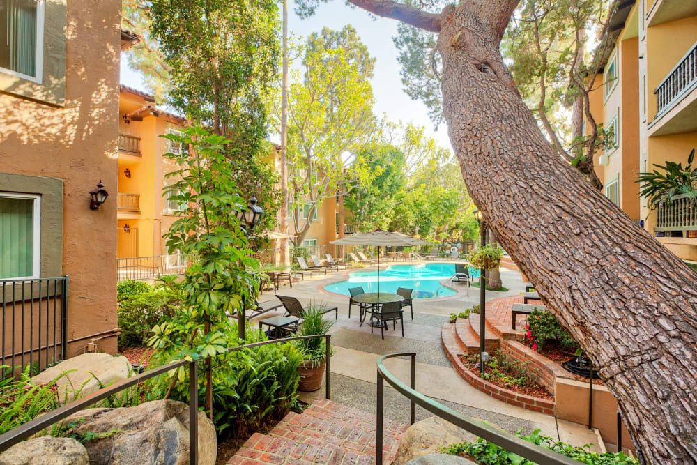 Mature trees and professionally-maintained landscaping at Casa Granada in Los Angeles, California
