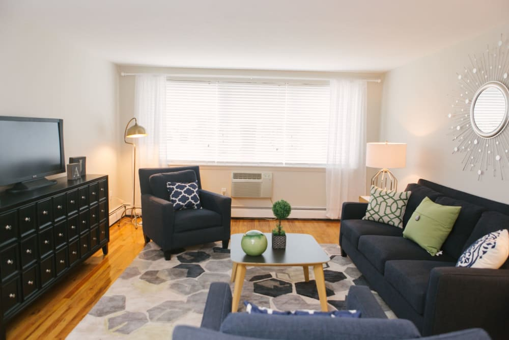 Decorated living room with cool area rug and tons of natural light at Eagle Rock Apartments at West Hartford in West Hartford, Connecticut
