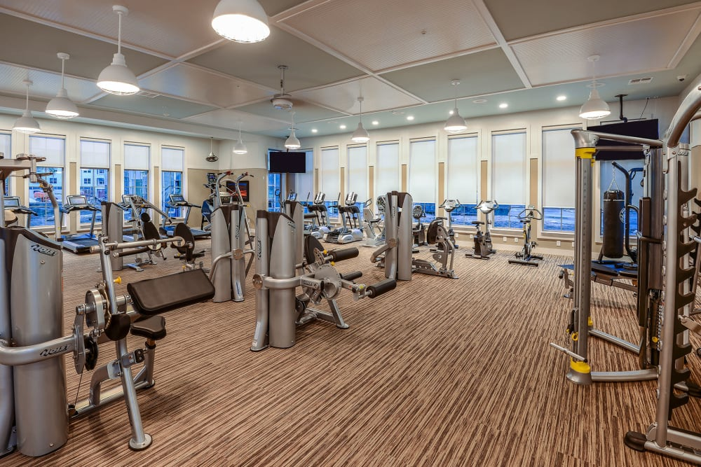 workout machines in gym at Palm Bay Club at Jacksonville