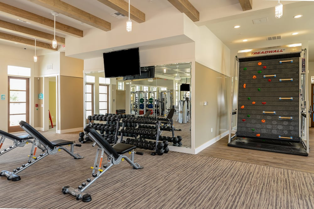 gym at Palm Bay Club at Jacksonville