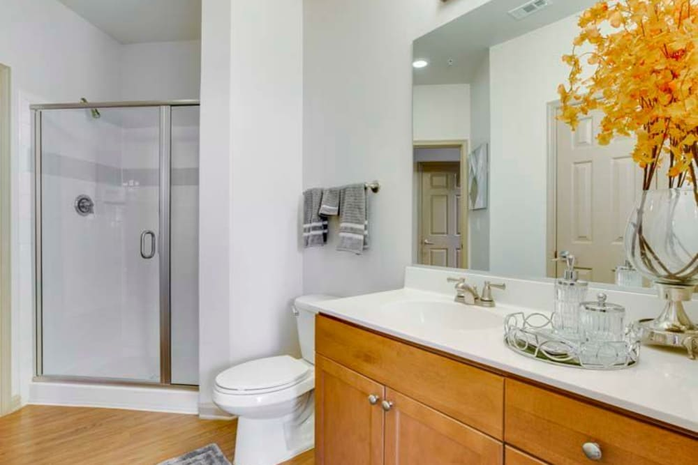Spacious bathroom with large mirrors and shower at Summerfield at Morgan Metro in Landover, Maryland