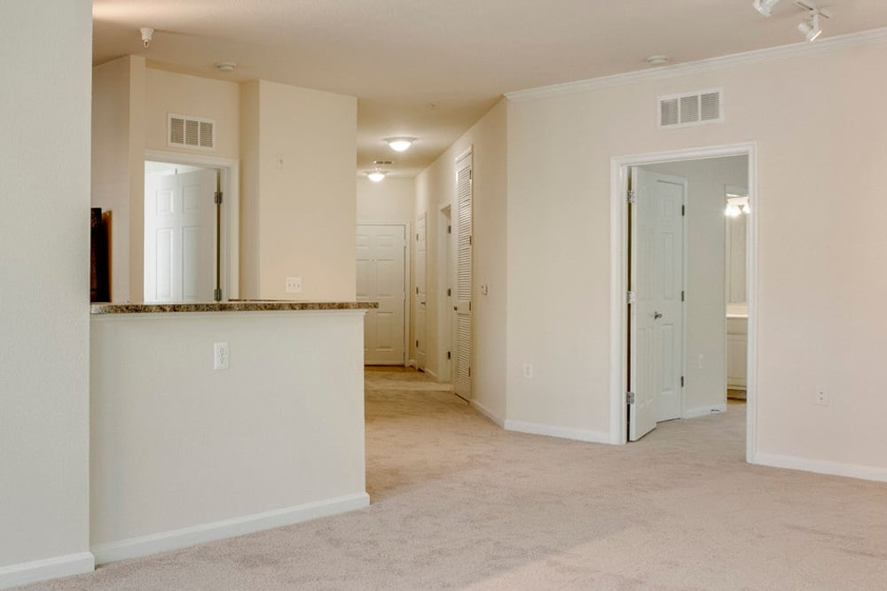 Empty living area with tons of light and carpeted floor at Summerfield at Morgan Metro in Landover, Maryland