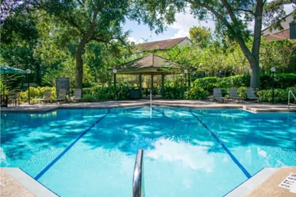 Swimming pool outdoors at 1801 MetroWest in Orlando, Florida