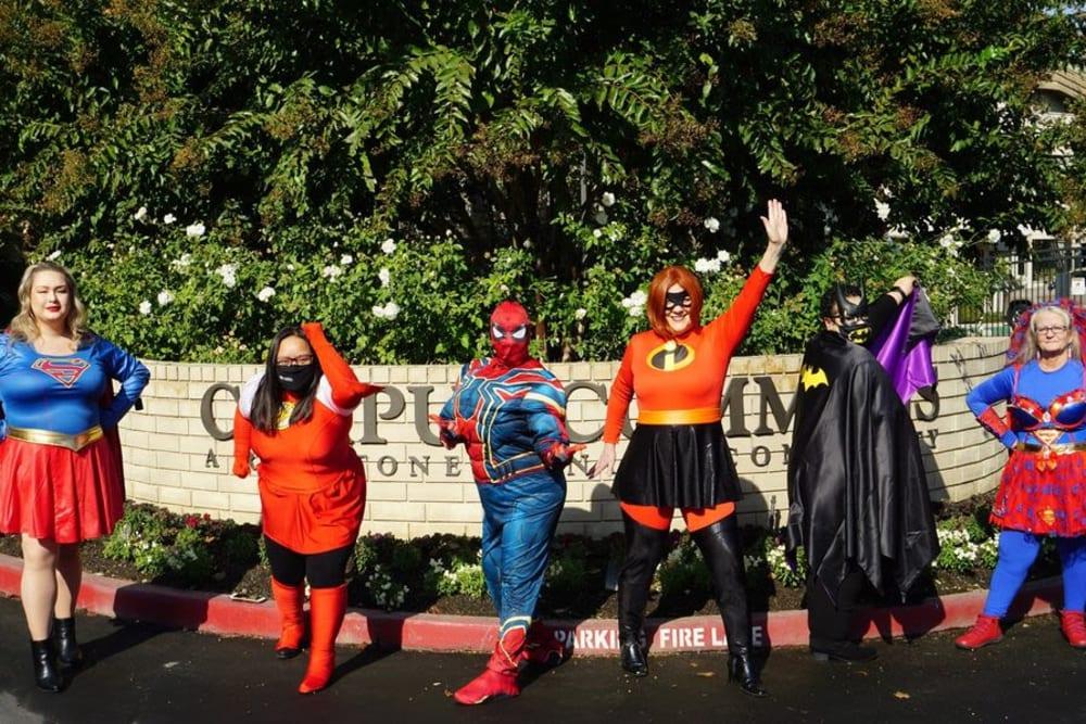 Ray Stone team members dressed up as super heroes