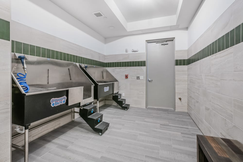Our Apartments in West Palm Beach, Florida offer a Dog Wash