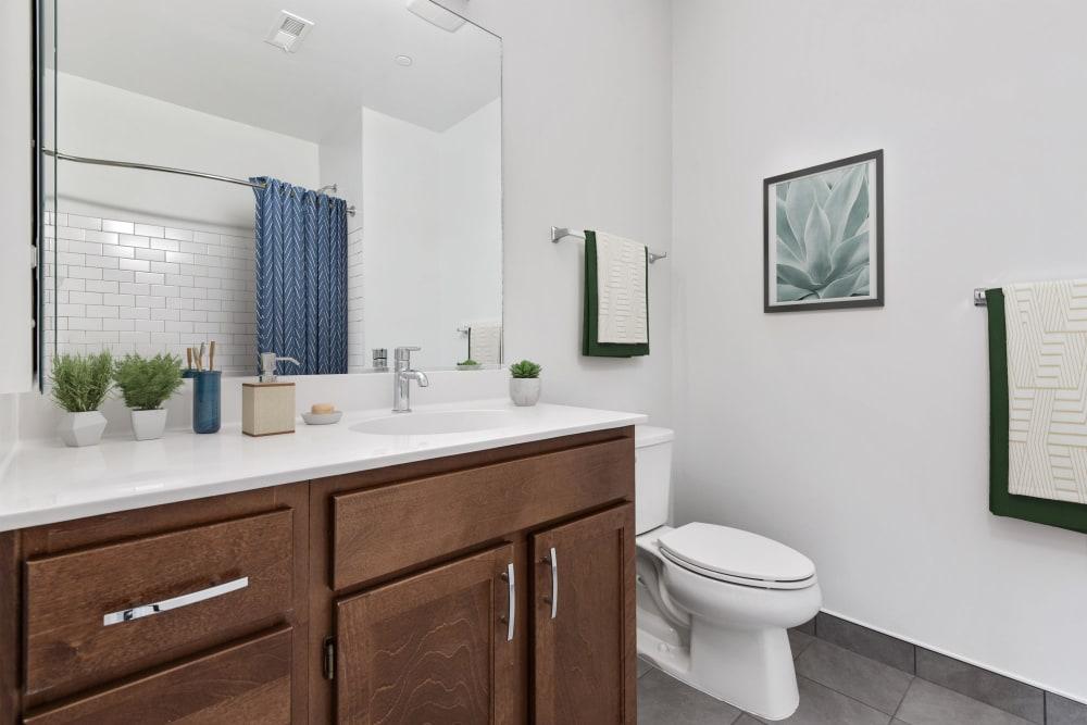 Bathroom at Lineage at North Patrick Street