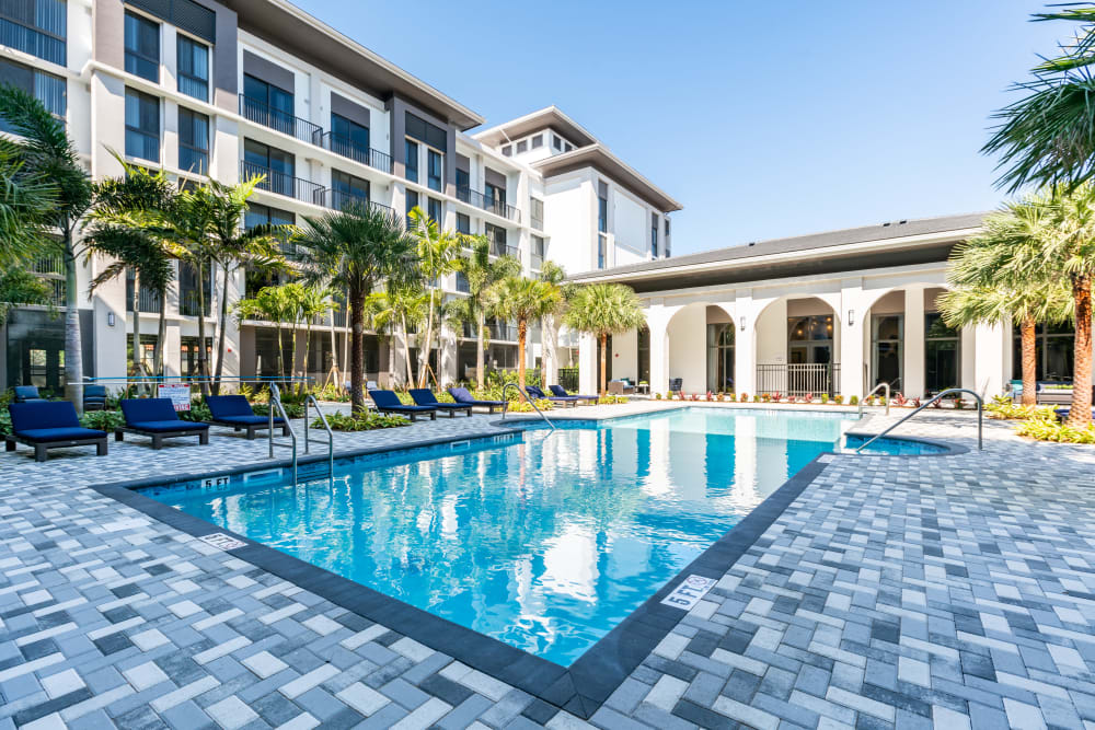 Swimming pool lined with palm trees at Solera at City Centre in Palm Beach Gardens, Florida