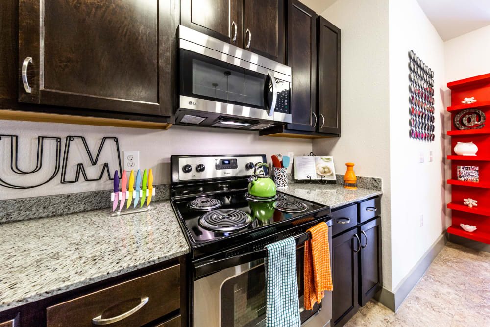 Kitchen with stainless steel appliances at Regents West at 24th in Austin Texas