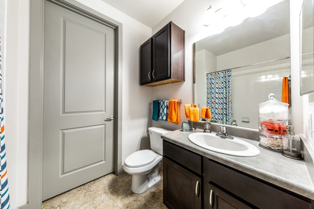 Clean bathroom at Regents West at 24th in Austin, Texas