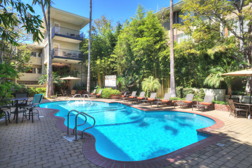 Resort-style swimming pool on a beautiful day at Sunset Barrington Gardens in Los Angeles, California