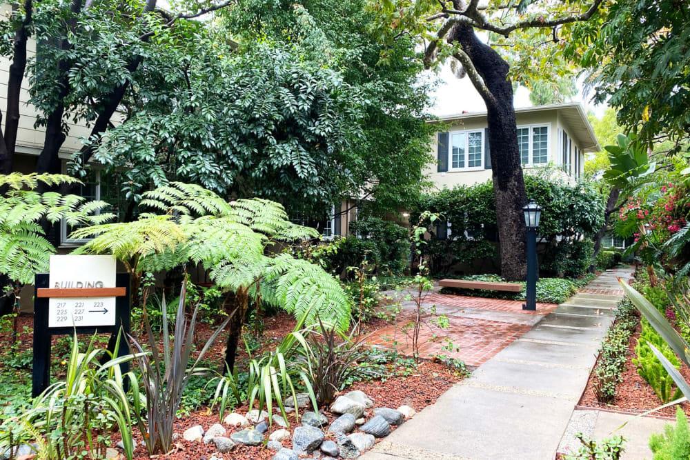 Lush landscaping along walkways at Sunset Barrington Gardens in Los Angeles, California