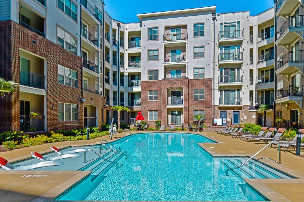 Swimming pool at 401 Oberlin in Raleigh, North Carolina