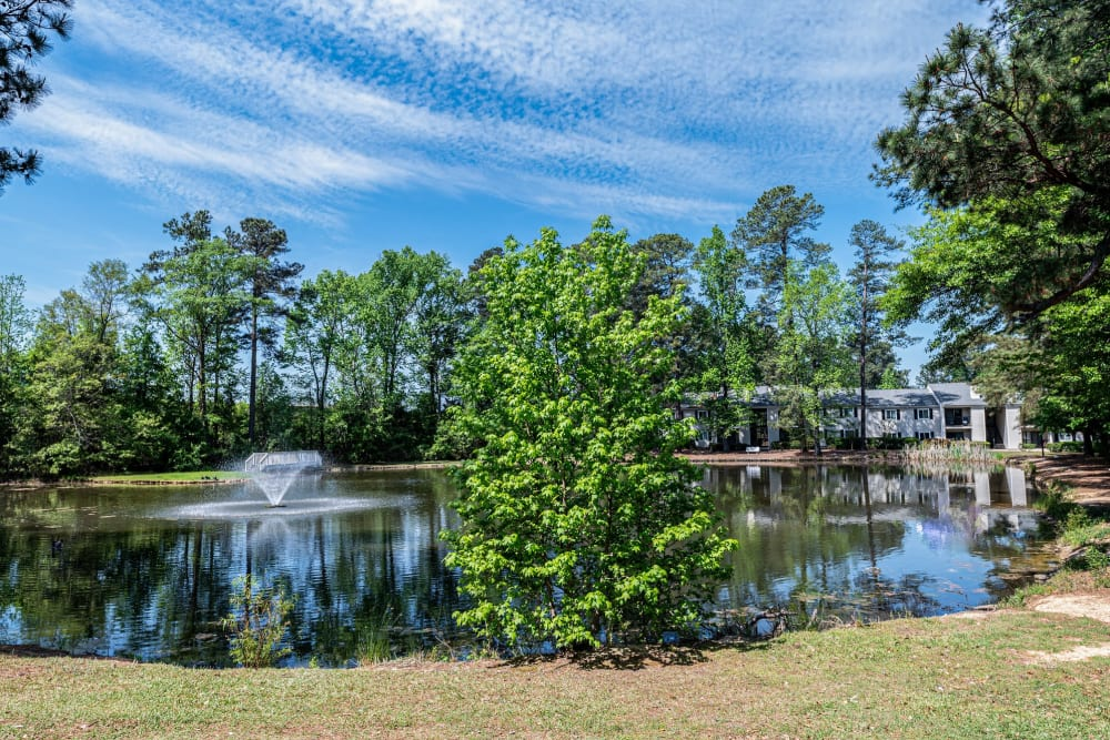 Enjoy Apartments with a Fishing Lake at Traditions at Augusta Apartment Homes in Augusta, Georgia