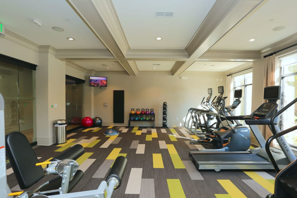 Treadmills and more cardio equipment in the fitness center at 2370 Main at Sugarloaf in Duluth, Georgia