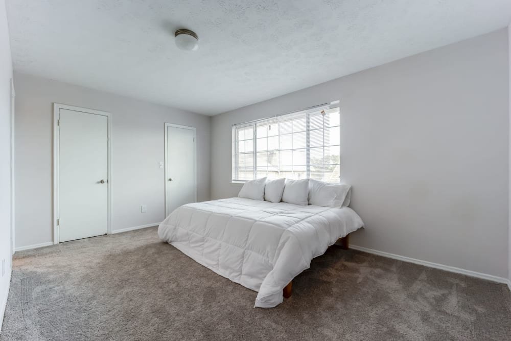 Plush carpeting and bay windows in an apartment home's primary bedroom at Sedgefield in Marietta, Georgia