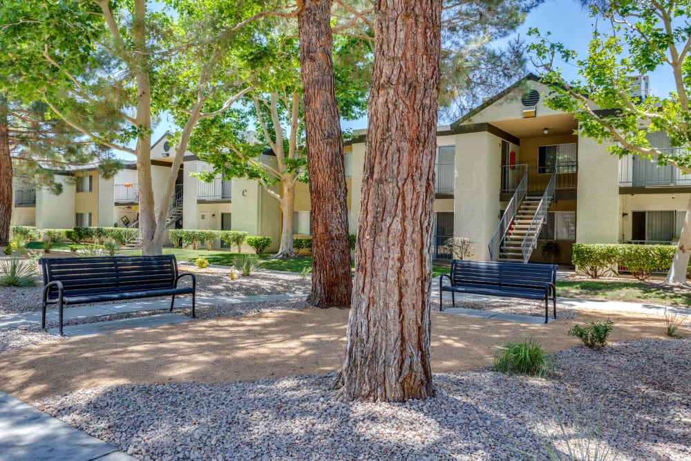 Mature trees providing shade at a park-like courtyard at Mountain Vista in Victorville, California