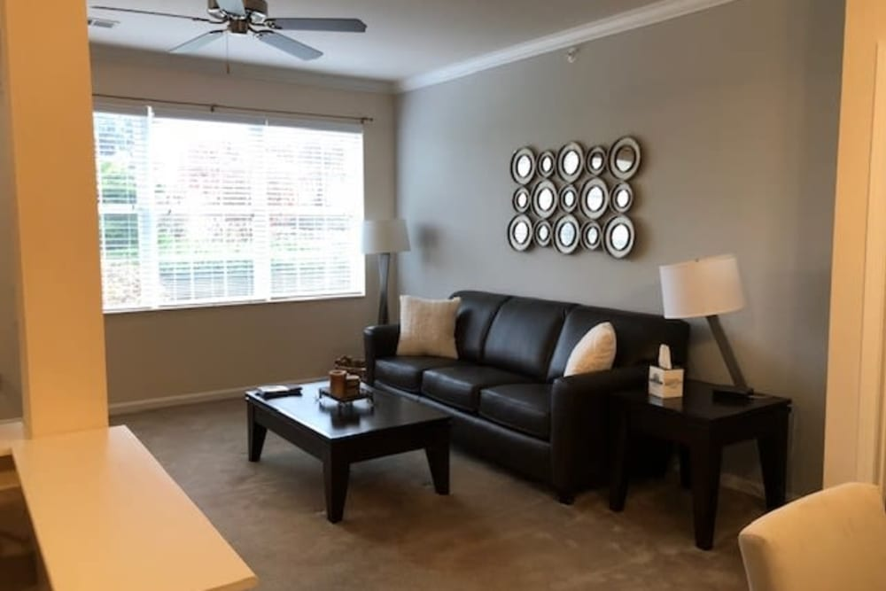 Spacious living room with large windows for lots of light at Aspen Pines Apartment Homes in Wilder, Kentucky