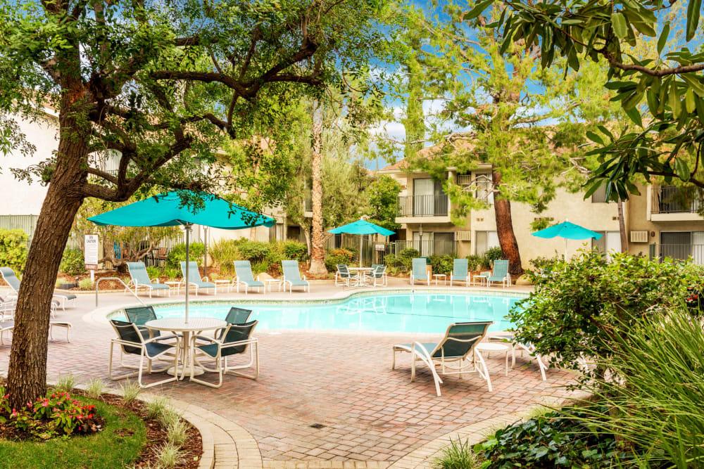 Mature trees and umbrellas providing shade at the swimming pool area at Village Pointe in Northridge, California