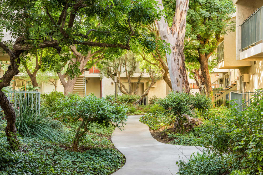 Winding walking path through our lushly landscaped community at Village Pointe in Northridge, California