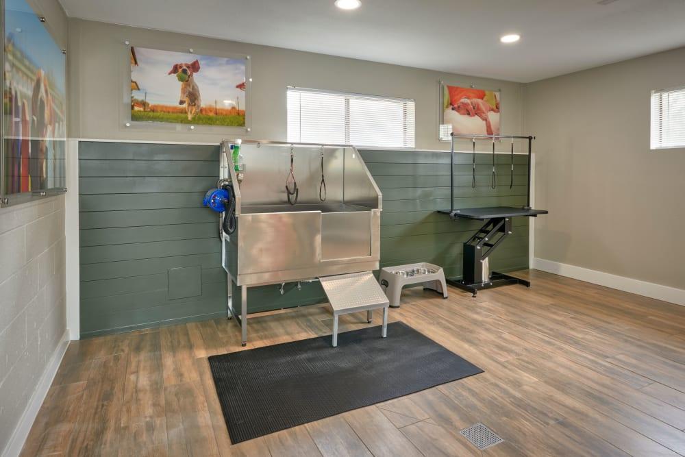 Pet Wash Room at Alton Green Apartments in Denver, Colorado