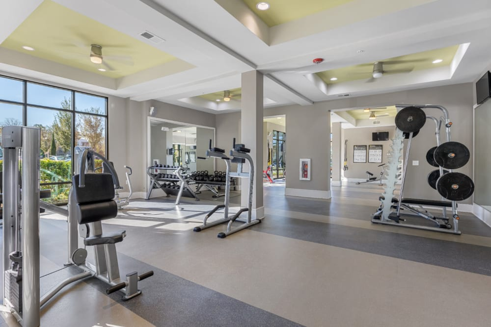 Assisted weight machines and free weight station in fitness room at Marq at Crabtree in Raleigh, North Carolina