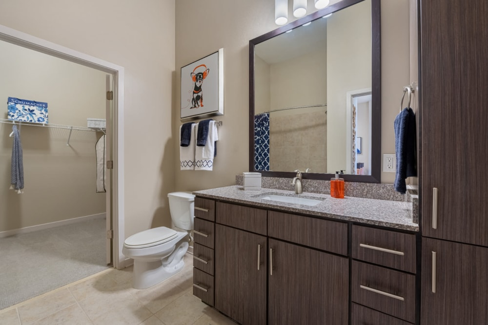 Bathroom with granite counter and entry to walk-in closet at Marq at Crabtree in Raleigh, North Carolina