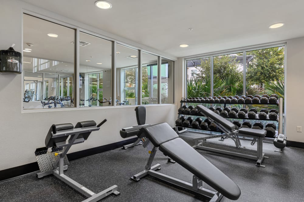 Free weight section with benches in fitness room at Sabina in Austin, Texas