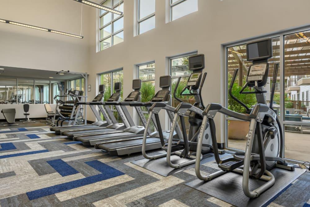 Ellipticals and treadmills facing pool side windows at Sabina in Austin, Texas
