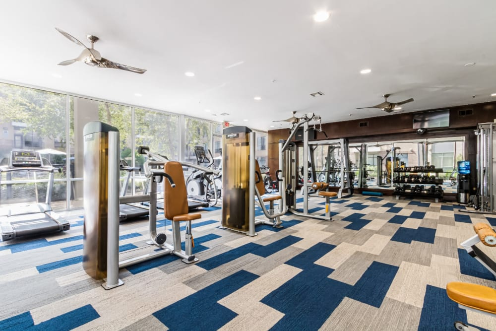 Assisted weight machines and cardio machines in large fitness room at The Marq on Voss in Houston, Texas