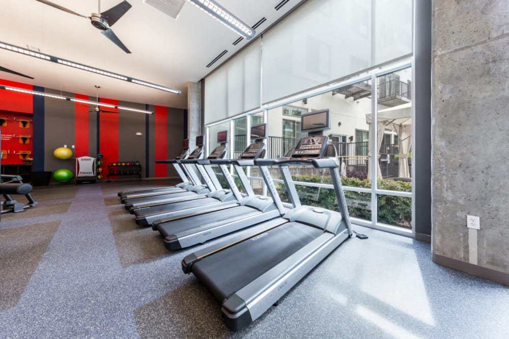 Treadmills lined up in front of large window at Marq on Burnet in Austin, Texas