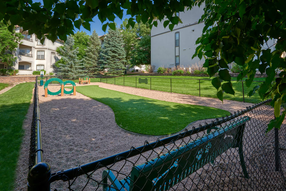 The dog park for your furry friend at Altitude Westminster in Westminster, Colorado