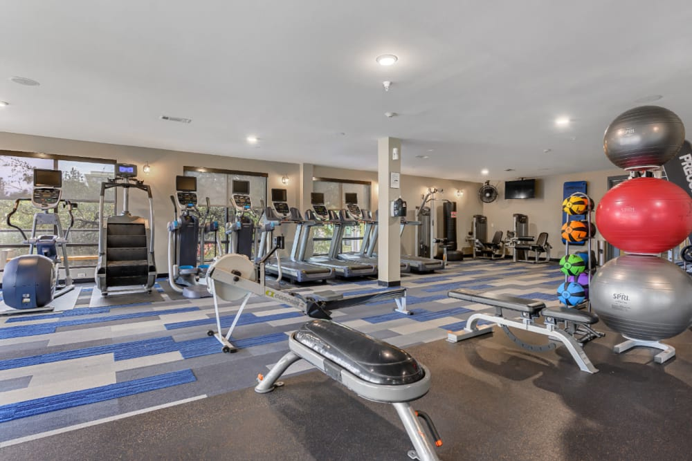 Cardio machines lined up against window in fitness room at The 704 in Austin, Texas