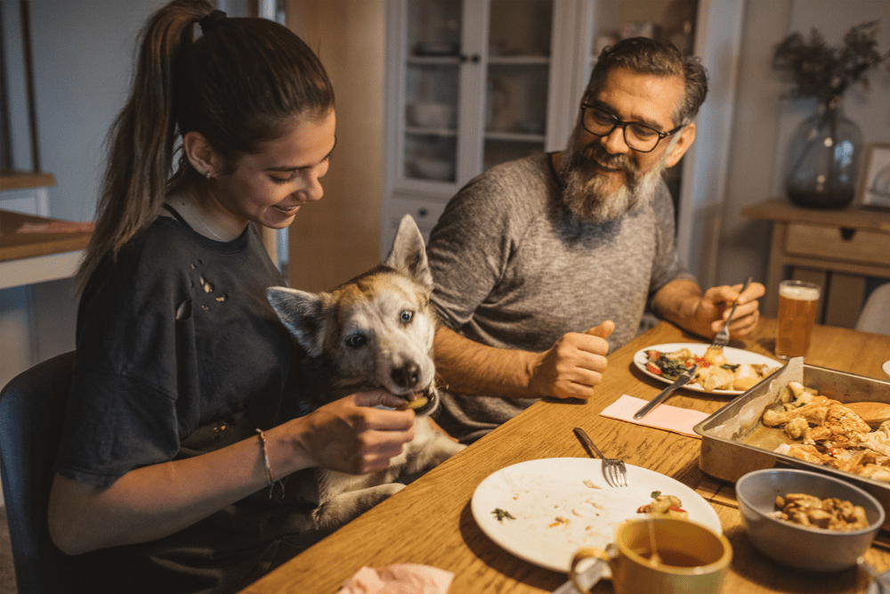 Couple and their dog eating dinner at The Residences at Sawmill Station in Morton Grove, Illinois
