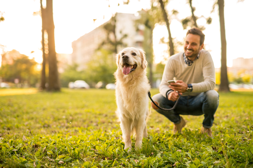 Resident and his dog out at a park near The Residences at Sawmill Station in Morton Grove, Illinois