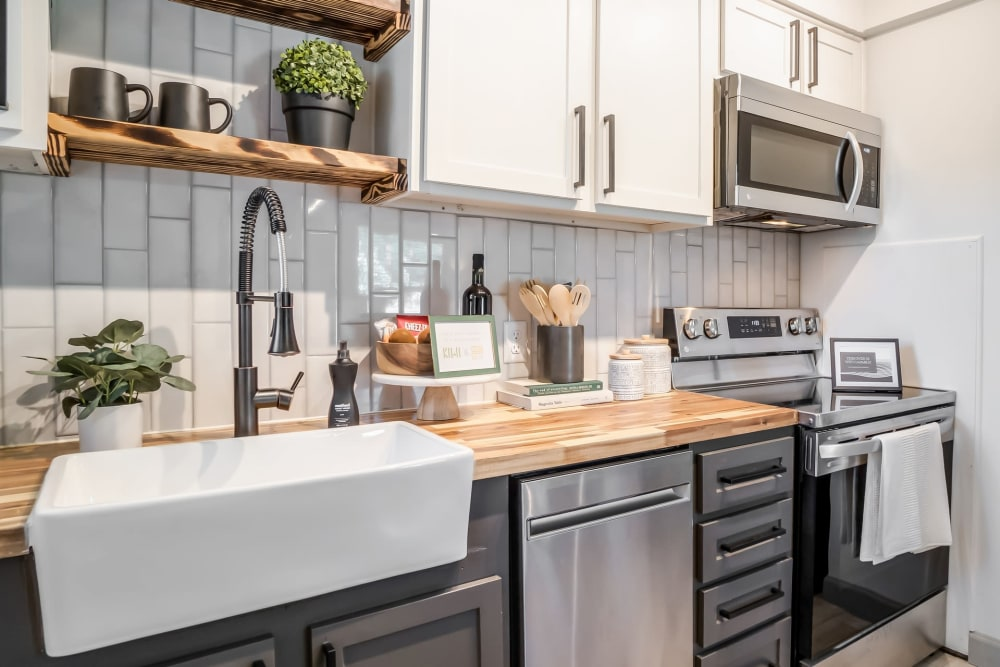 Modern, sleek kitchen at Kiwi Goji Apartments in Memphis, Tennessee