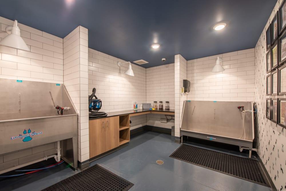 Dog washing station at Marq Iliff Station in Aurora, Colorado
