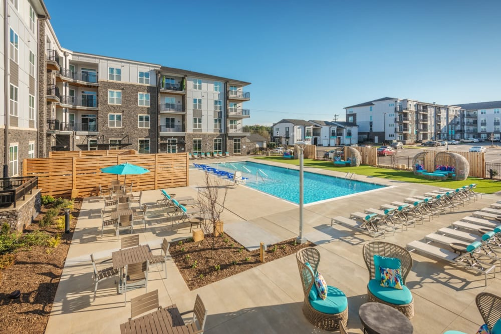 Refreshing outdoor pool with tons of lounge chairs all around it at Blu at Northline Apartments in Charlotte, North Carolina