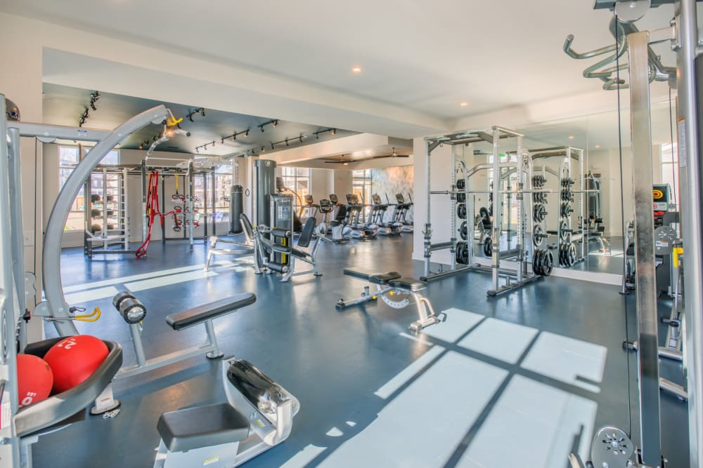 Full sized gym for residents to use at anytime at Blu at Northline Apartments in Charlotte, North Carolina