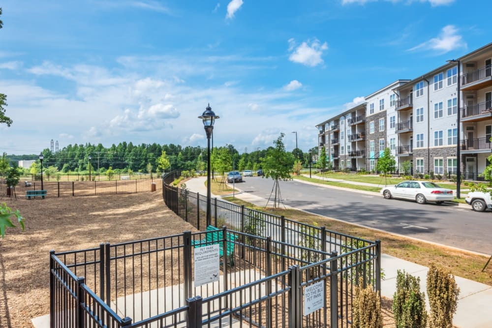 On-site dog park for residents at Blu at Northline Apartments in Charlotte, North Carolina