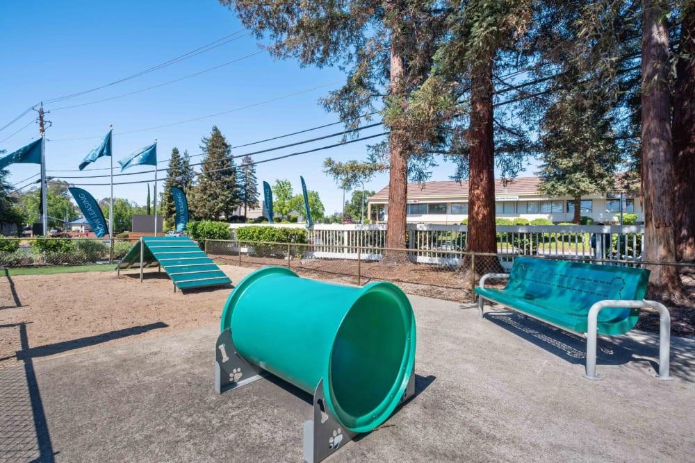 Playground at Haven Martinez in Martinez, California
